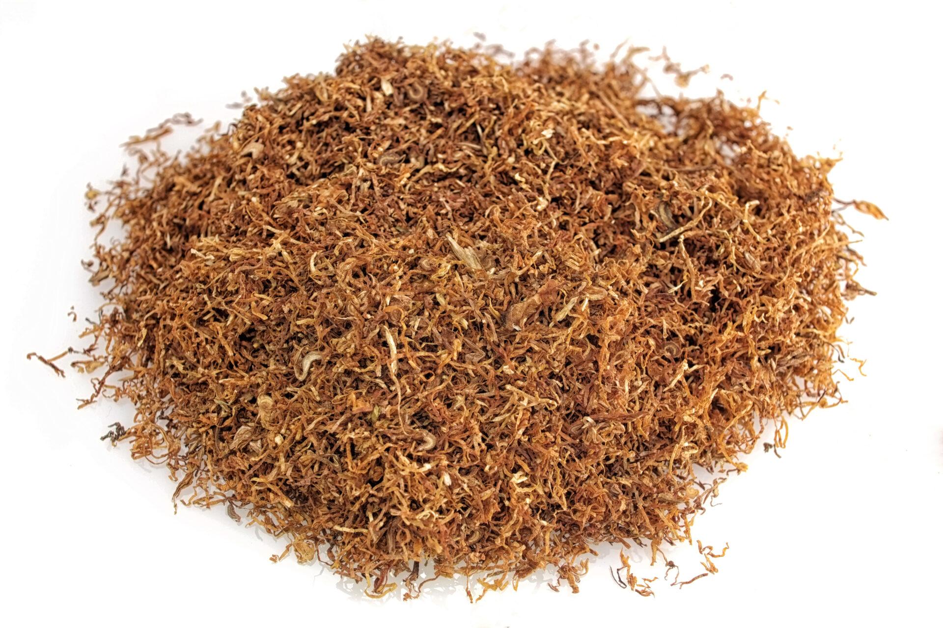 tytoń korsarz mocny